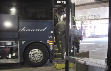 Ap 20045647443023 Greyhound